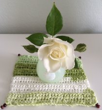 Crochet Beginnings