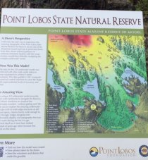 Point Lobos Reserve | photo